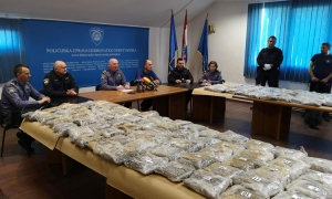 Molly sniffs out over 60 kilos of drugs at border crossing