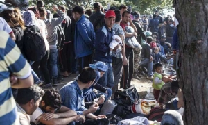 650,000 asylum seekers in EU last year – Croatia only 0.1 percent of total