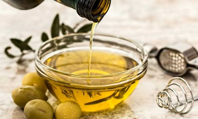 Best olive oil from Croatia