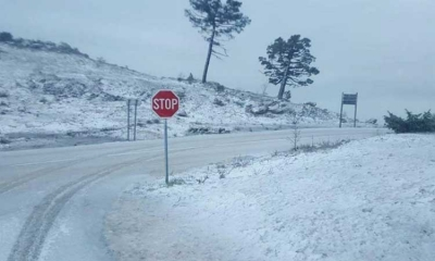Snow in Konavle again!