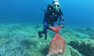 56 kilos of waste removed from seabed near Lokrum in special Green Cleanup action