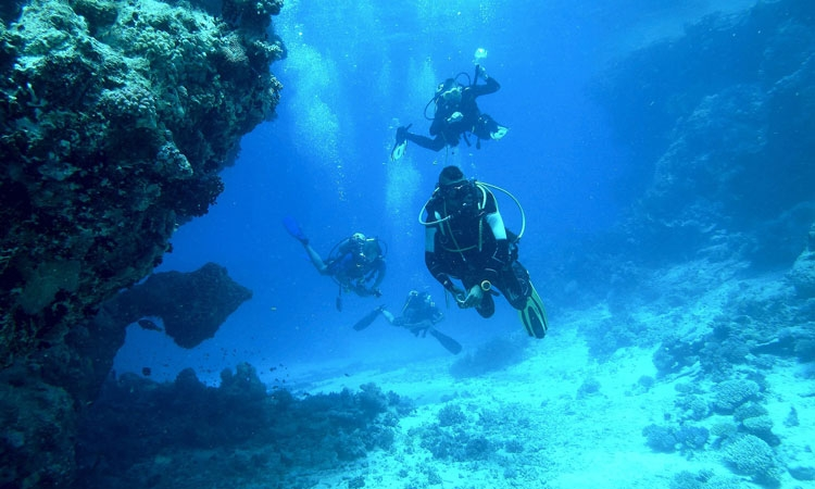 explore an underwater world in Dubrovnik