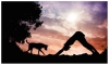Join humanitarian Sunset Yoga with your pets to relax and help