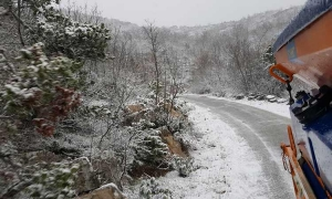 White out in Konavle hills this morning